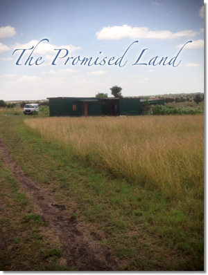 the promised land newsletter